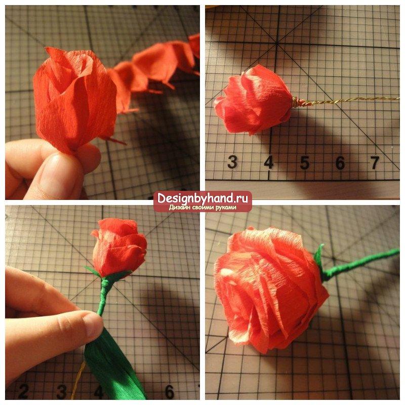 Как сделать розы из крепированной бумаги своими руками 393